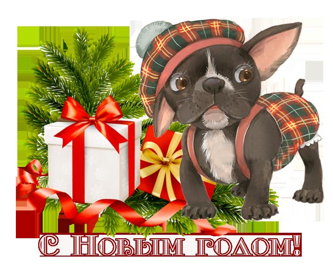 поздравление любимой собаке с новым годом для