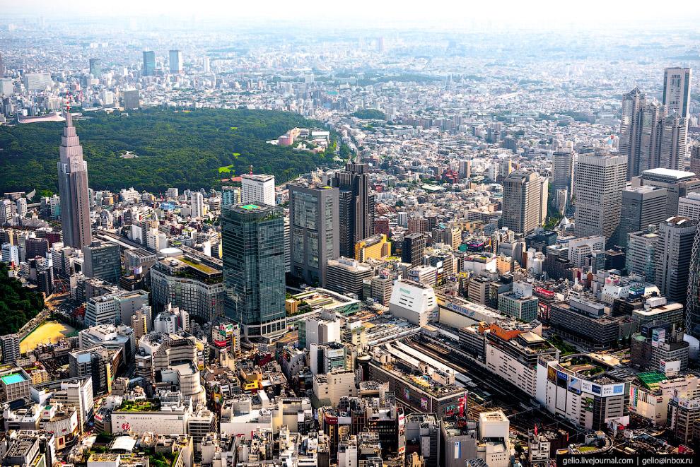 49. Климат в Токио — субтропический муссонный. Зимы сухие, бесснежные, а летом здесь жарко, влажно и