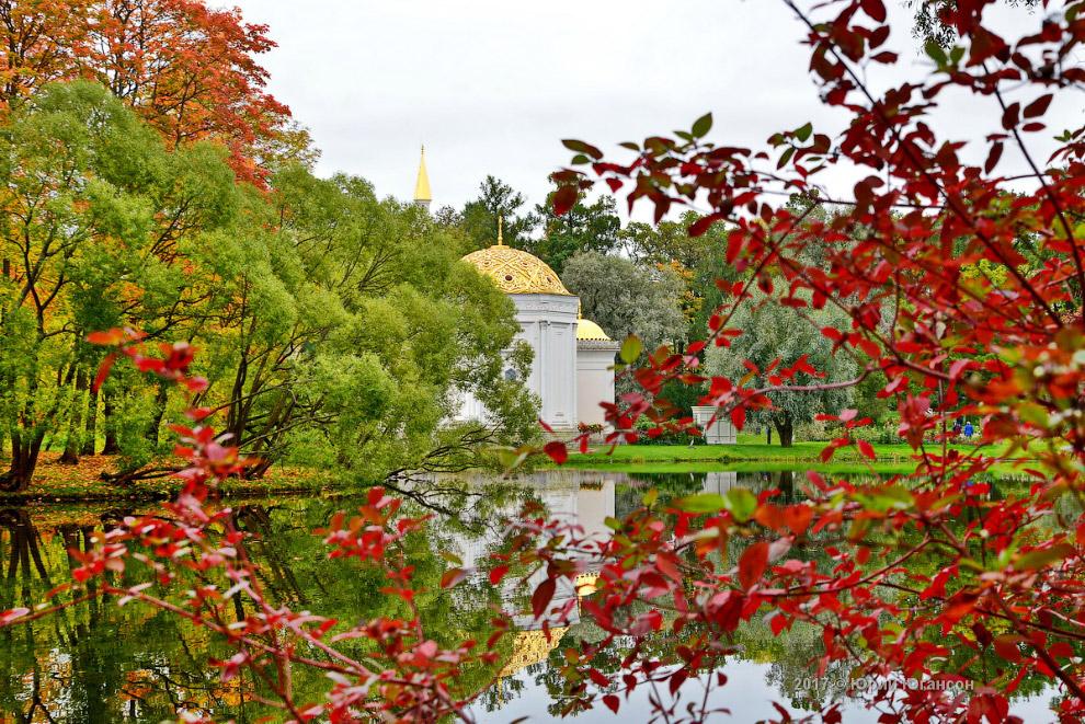 Осень Царского Села