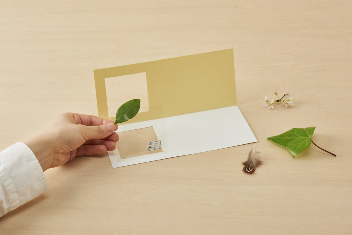 Preserve Botanical Finds and Other Travel Specimens With This Unique Japanese Stationery (3 pics)