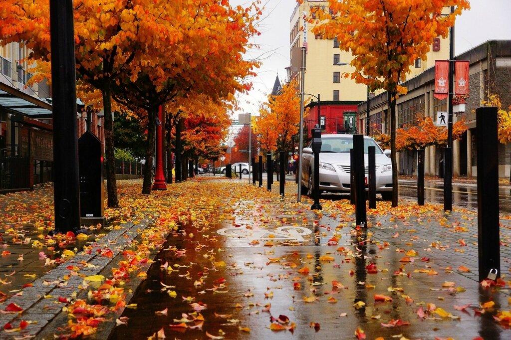 Autumn Chinatown..jpg