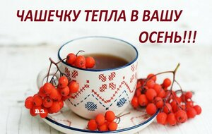 https://img-fotki.yandex.ru/get/892702/131884990.c9/0_1587ae_c0d11b78_M.jpg