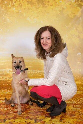 Лиса собака из приюта догпорт