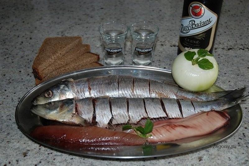 У немцев есть особый завтрак, который готовят при похмелье — маринованная селёдка
