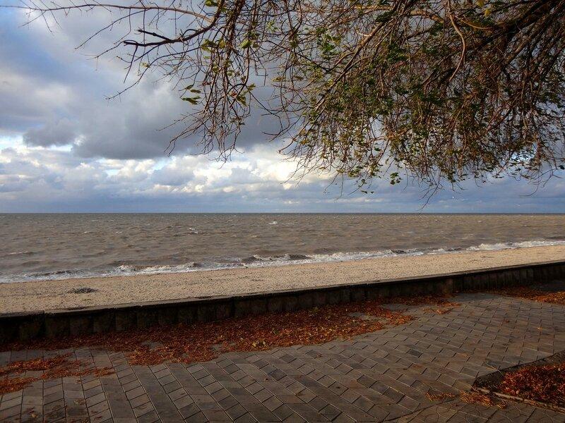 У моря, Осень ... На финише октября, в городе у моря Азовского. (47).JPG