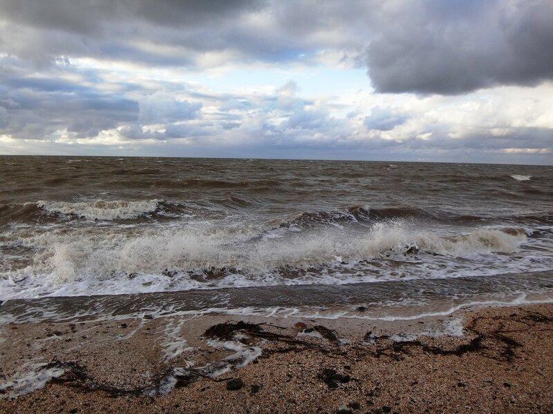 Ветер, вод кипенье ... На финише октября, в городе у моря Азовского. (53).JPG