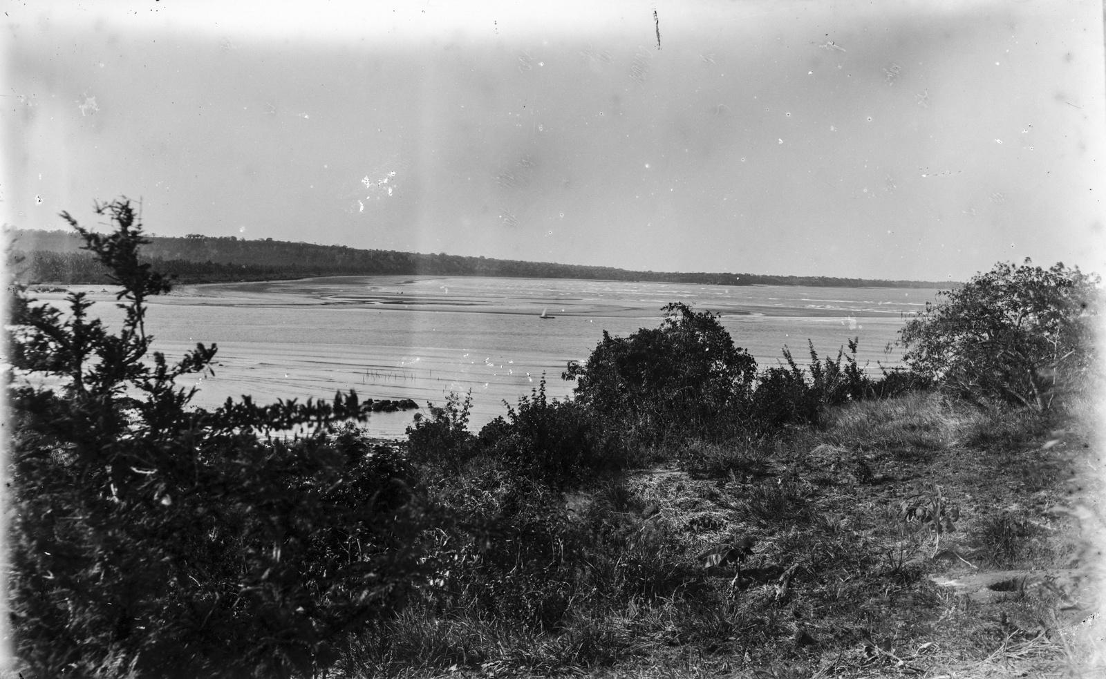 345. Вид с берега в устье реки Руву около Пангани