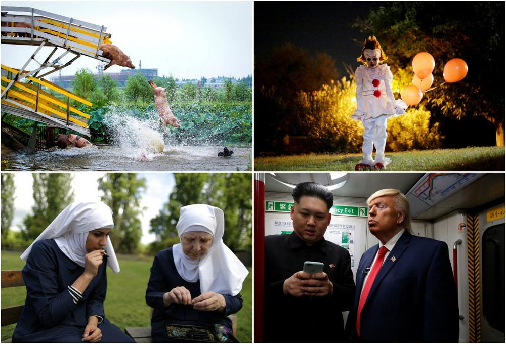 Лучшие странные и необычные фотографии 2017 года