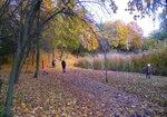 Осенняя благодать