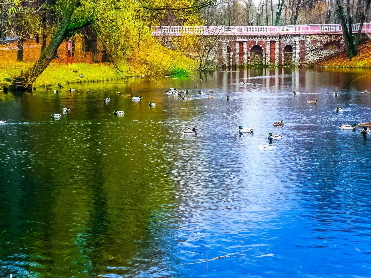 irina-fortuna-lefortovsky-park 01.jpg