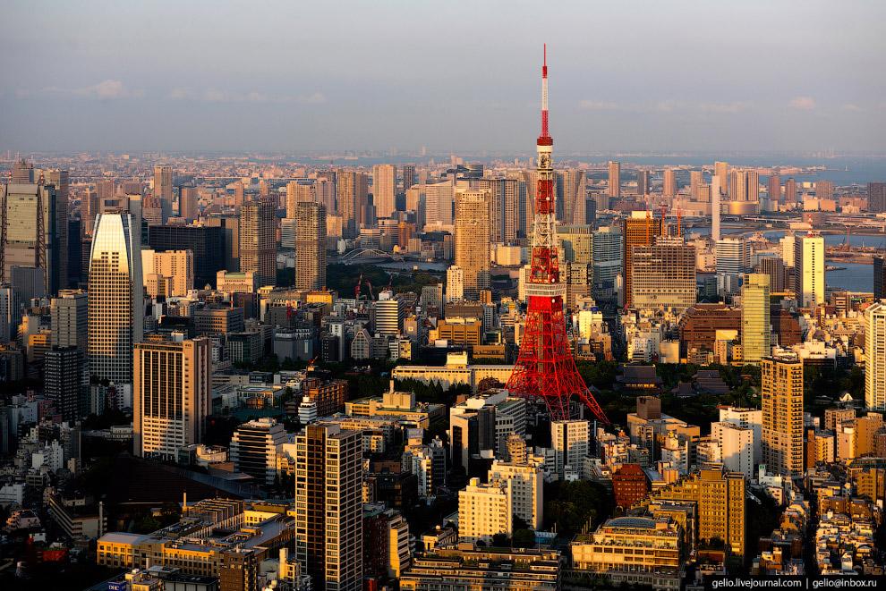 18. Правительственный и бизнес-район Синдзюку (Shinjuku) — административный центр префектуры Токио.