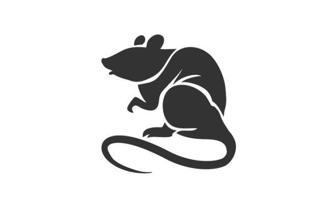 Крыса — очаровательность и некоторая нервозность. Родившиеся в год Крысы плохо себя контролиру