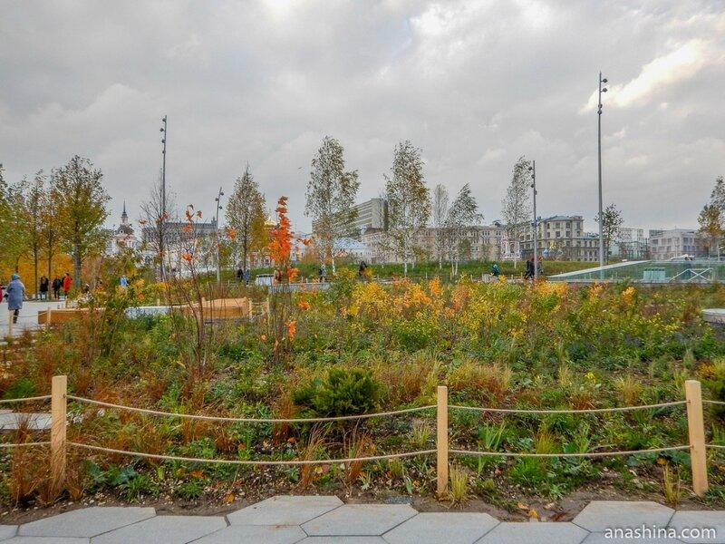 "Парковая ландшафтная зона «Степь», парк ""Зарядье"", Москва"