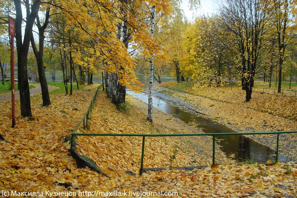 Осень на Головинских прудах
