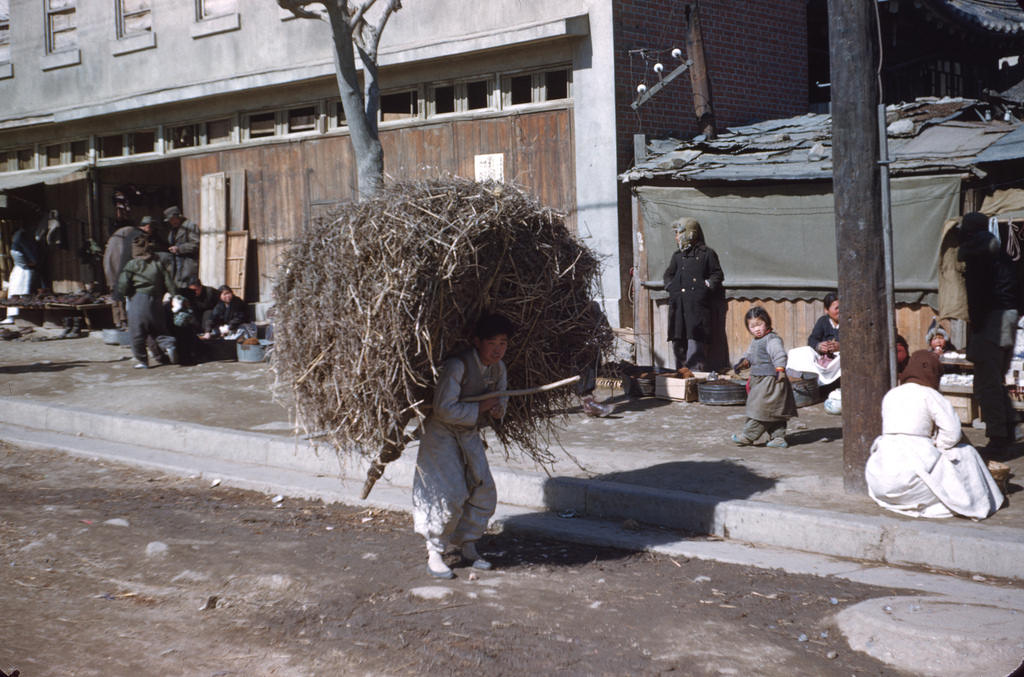 People depended on wood for heat and cooking, even small branches and twigs like this.jpg