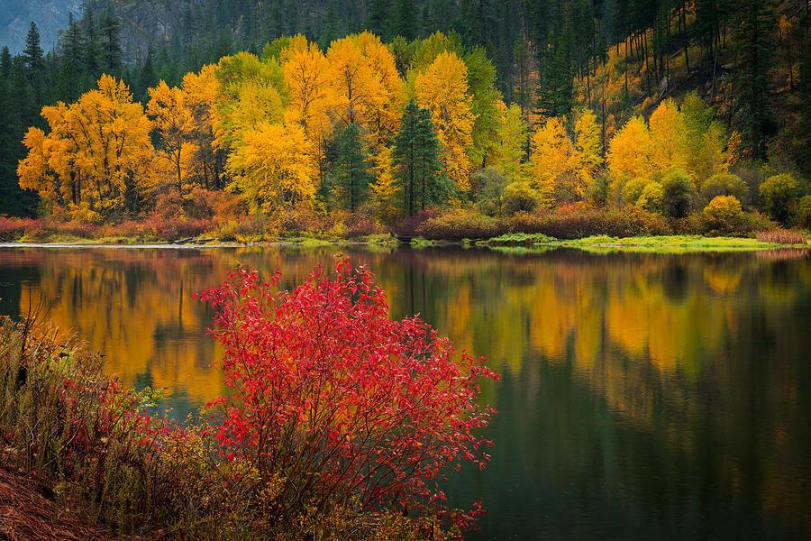 wenatchee-river-reflections-dan-mihai.jpg