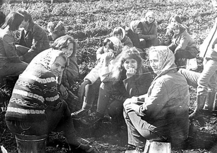 0 17ae0b 45ab0694 XL - Молодежная модная одежда в СССР