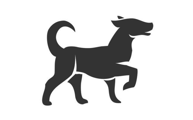 Собака — преданность и замкнутость. Они честны, умеют хранить чужие тайны, ладят с людьми и по