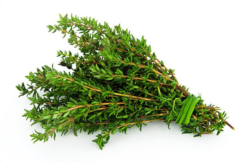 5. Храните маслянистые травы отдельно от других видов зелени. Такие травы, как тимьян, нужно связыва