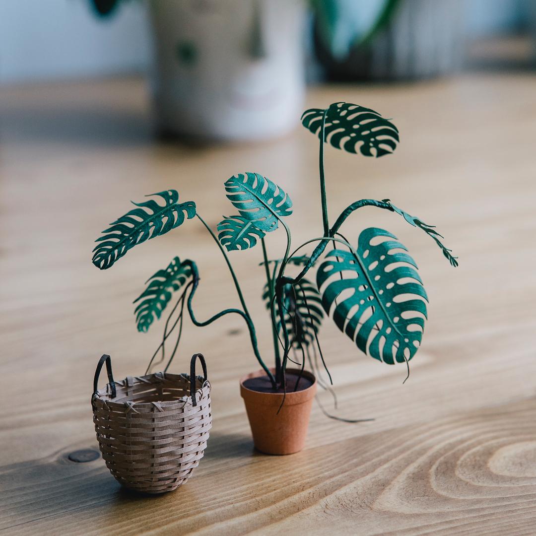 Miniature Paper Plants by Raya Sader Bujana (10 pics)