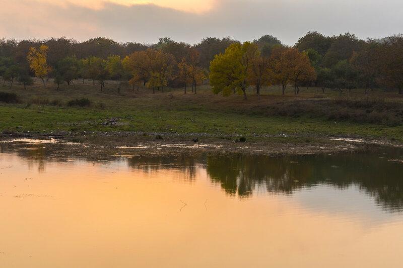 Осенью, у воды