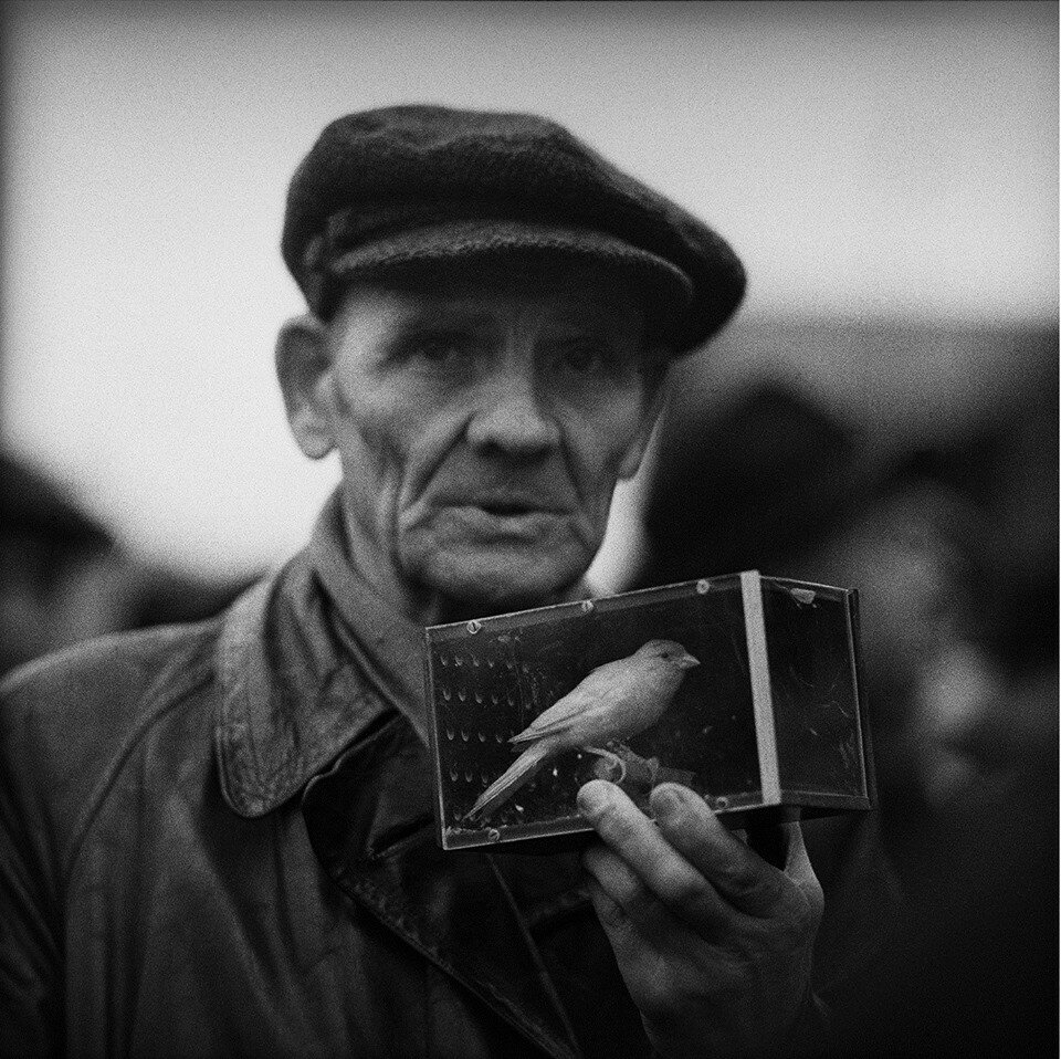 Tadeusz Rolke 60.jpg