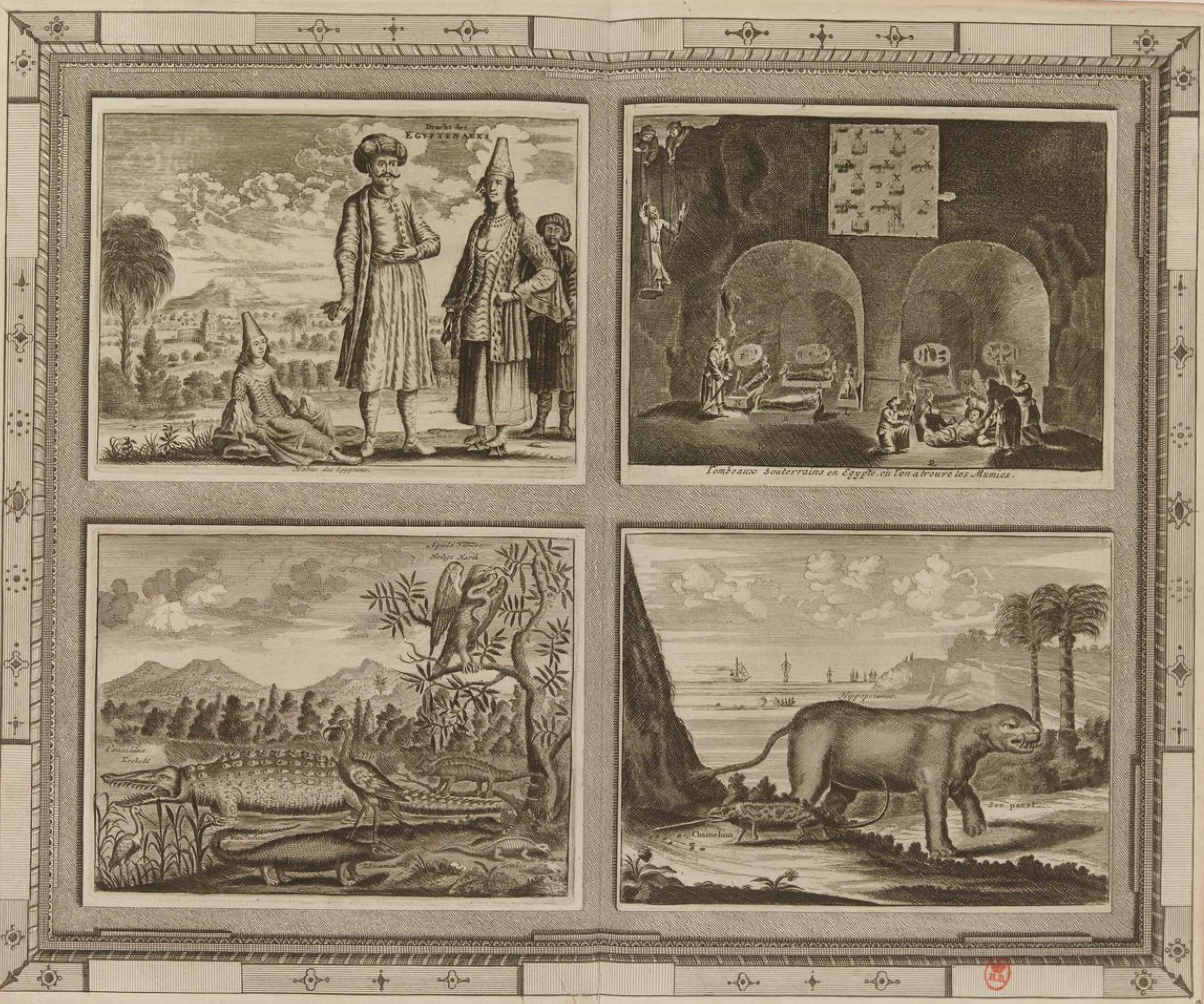 23. Обычаи египтян - подземные гробницы в Египте, где были найдены мумии - орла, крокодила, бегемота, хамелеона и т. д.