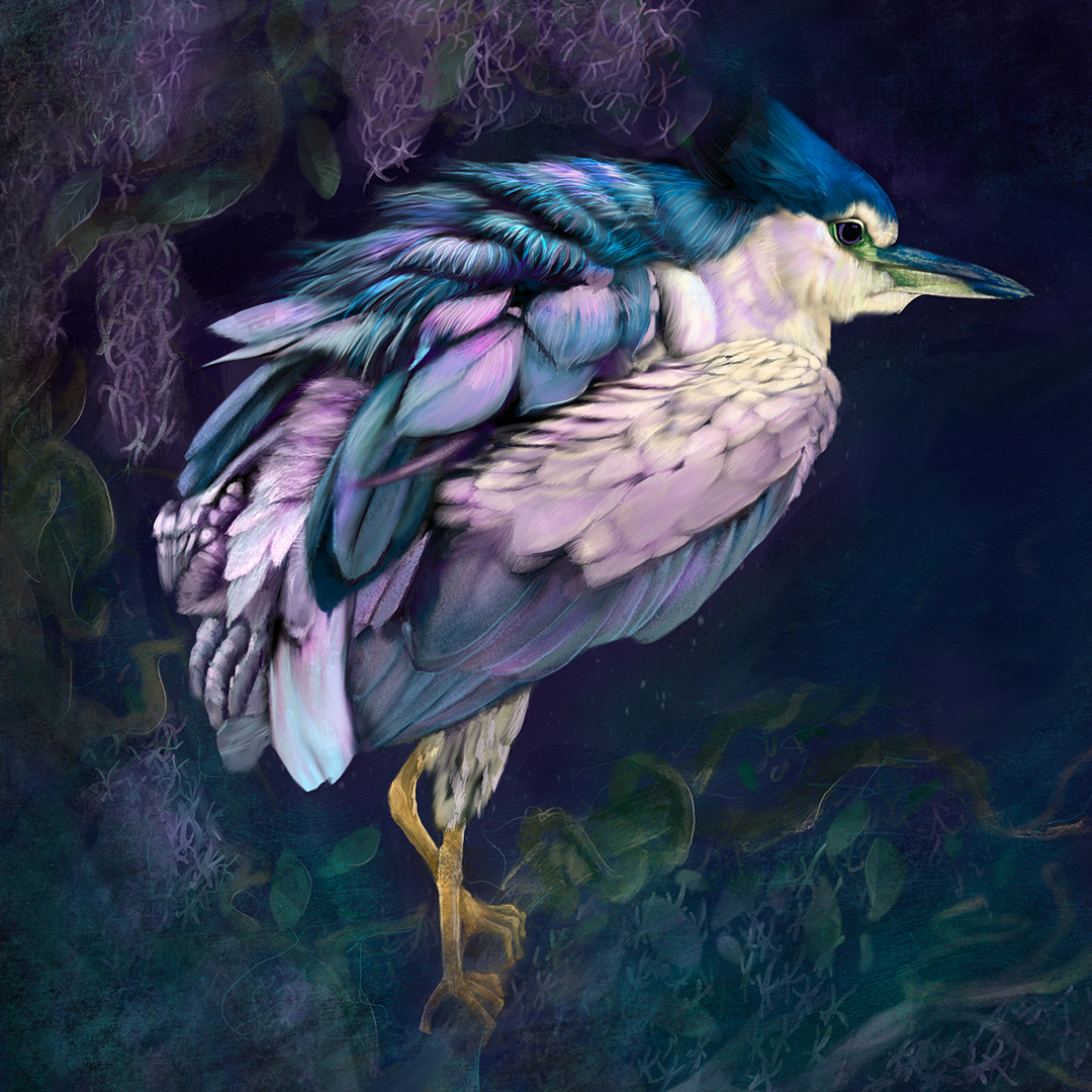 Цифровые рисунки Donna Browning