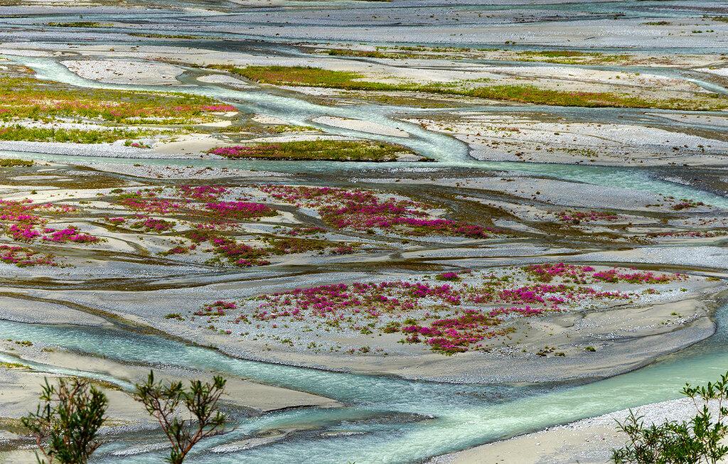 Цветущие острова