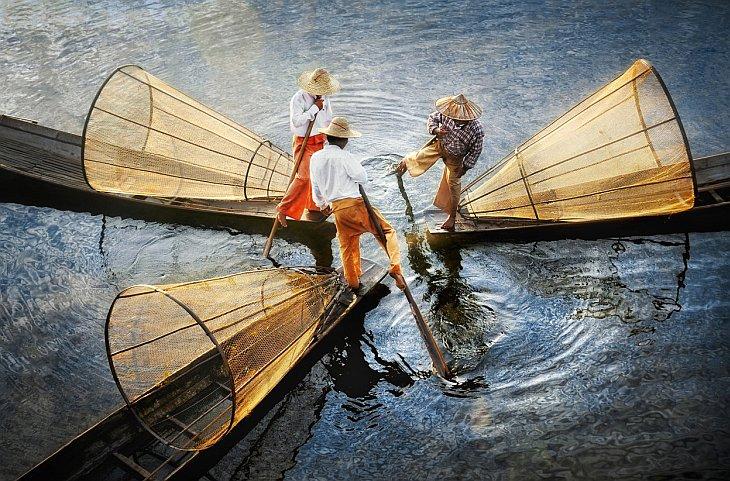 Международный конкурс фотографии от журнала Smithsonian (25 фото)