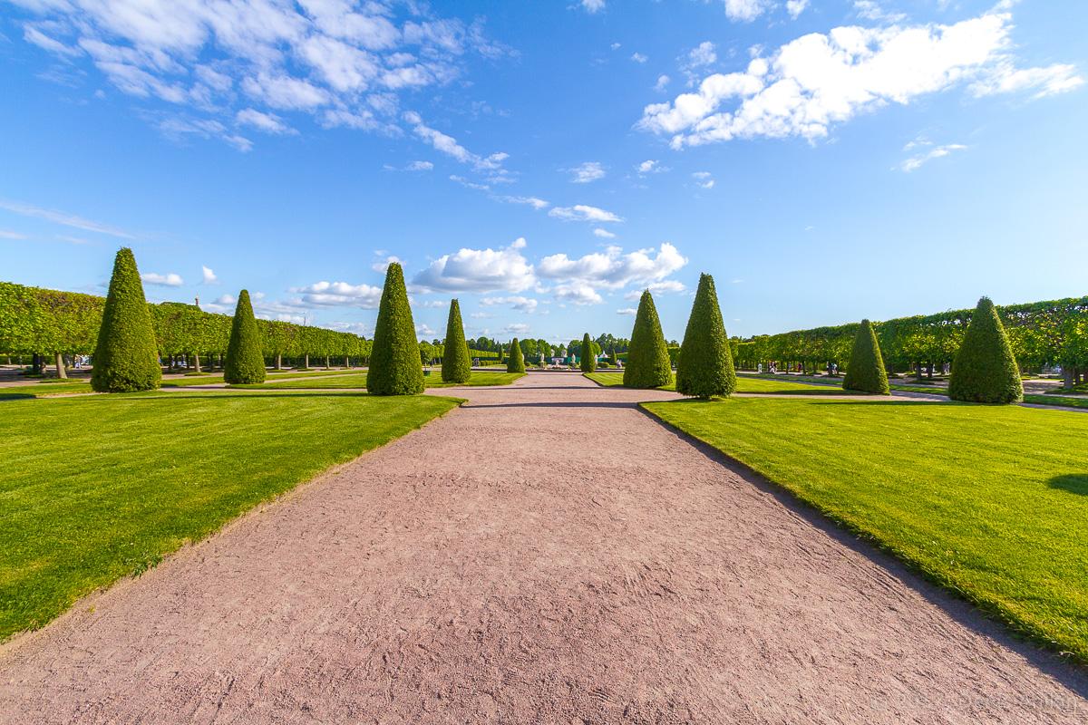 верхний сад петергоф фото 18