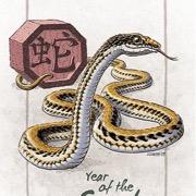 Каким будет 2018 год для рожденных в год Змеи?