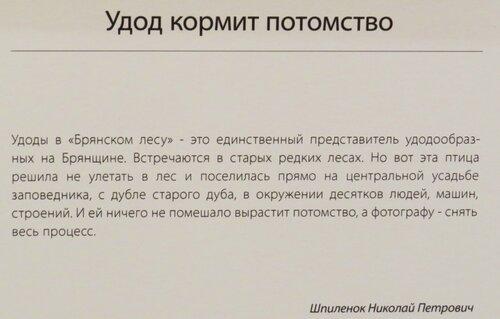 https://img-fotki.yandex.ru/get/893904/140132613.6c1/0_243d7e_96c1d268_L.jpg