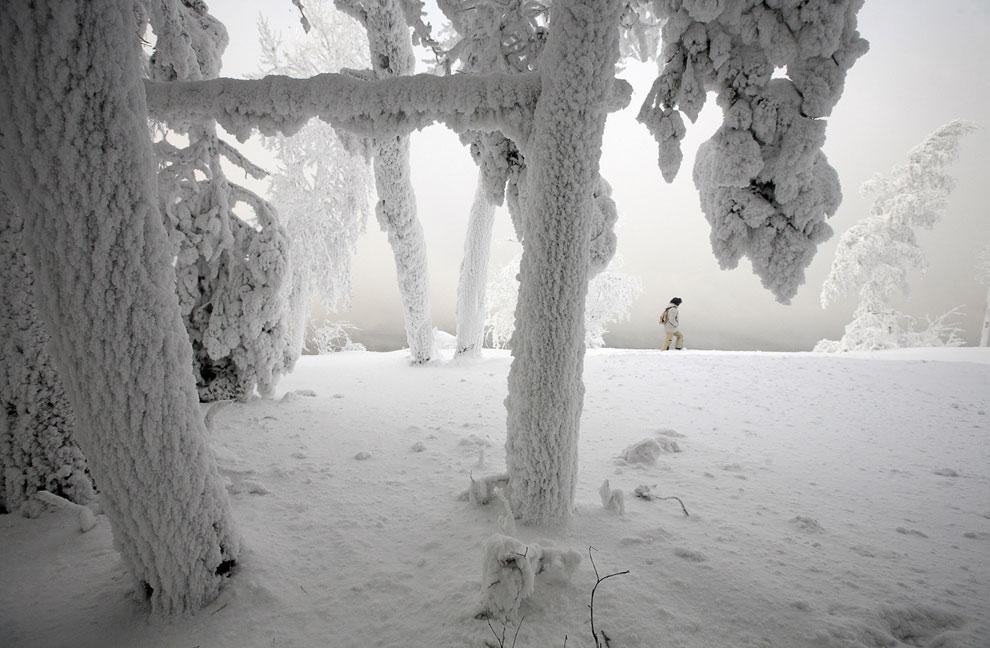 1-й Международный фестиваль скульптуры снега и льда под названием «Волшебный лед Сибири», он проходи