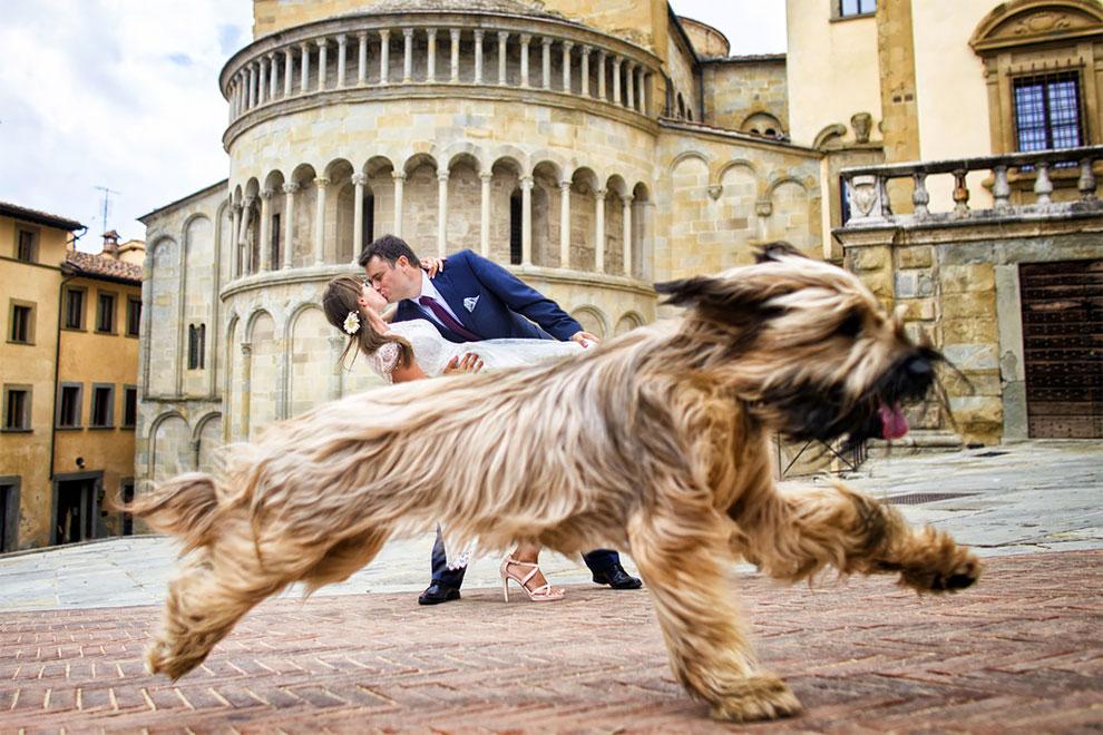 12 свадебных фотографий, которые испортила какая-то скотина (11 фото)