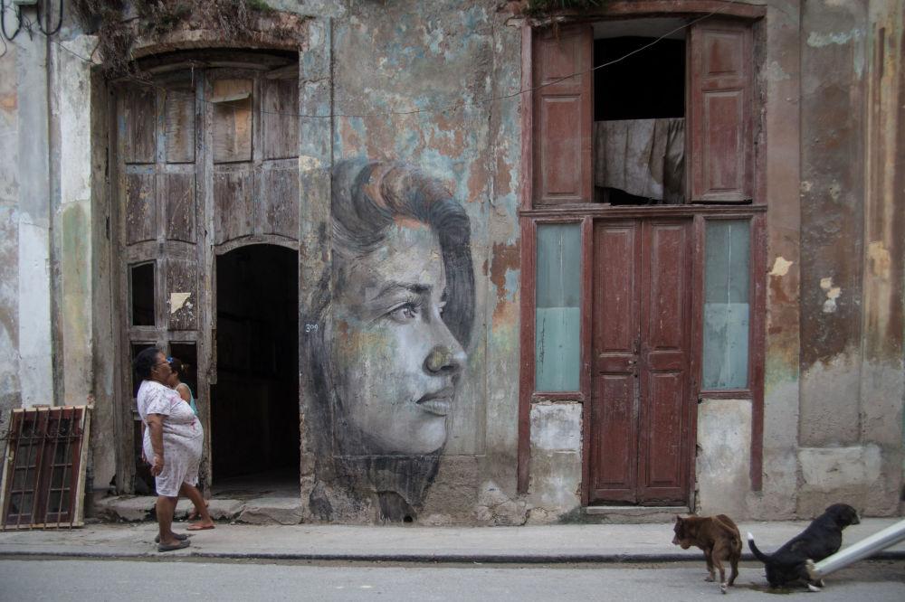 Подпись Тайрона «Портрет Джейн Доу» открывается в комнатезаброшенного дома в Альфингтоне. К