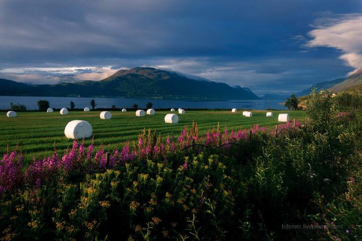 Белые ночи Норвегии (30 фото)