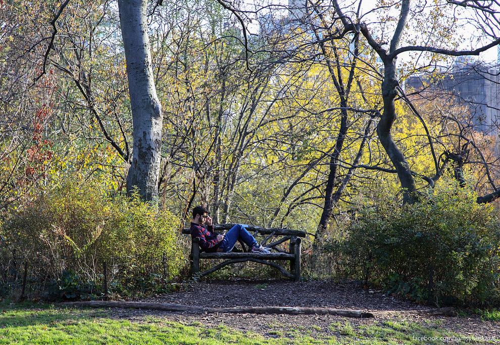 13. Дорожка в парке.
