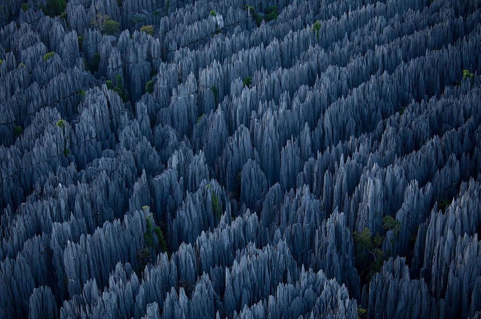 Такой сложный ландшафт, недоступный для человека, помогает выжить редким видам животных и растений,