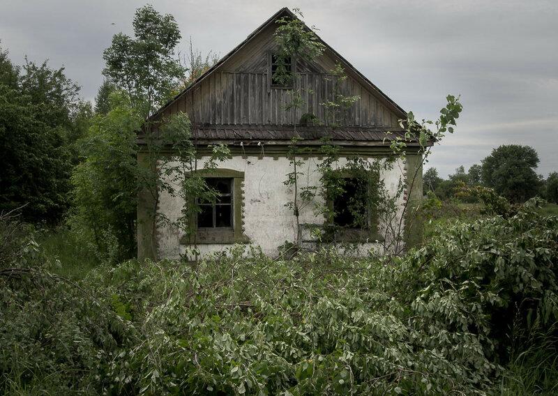 В кустах прячутся заброшенные дома.
