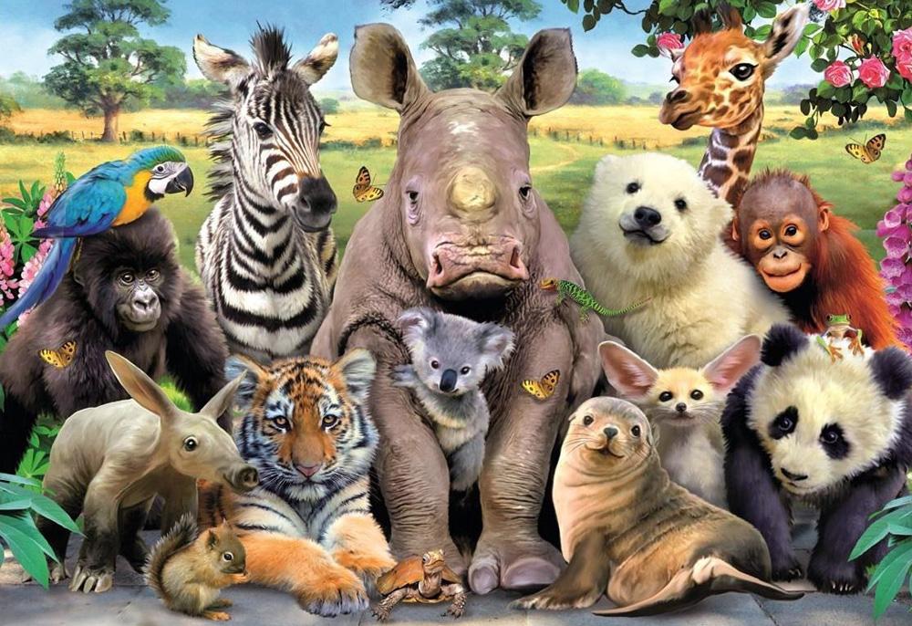 картинки всех животных картинки всех животных самого утра воинская