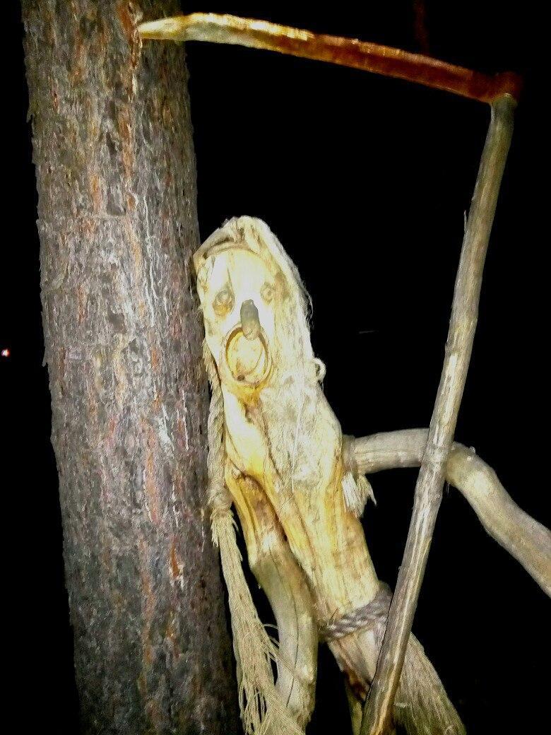 На территории детского лагеря «Лесовичок» можно снимать фильмы ужасов