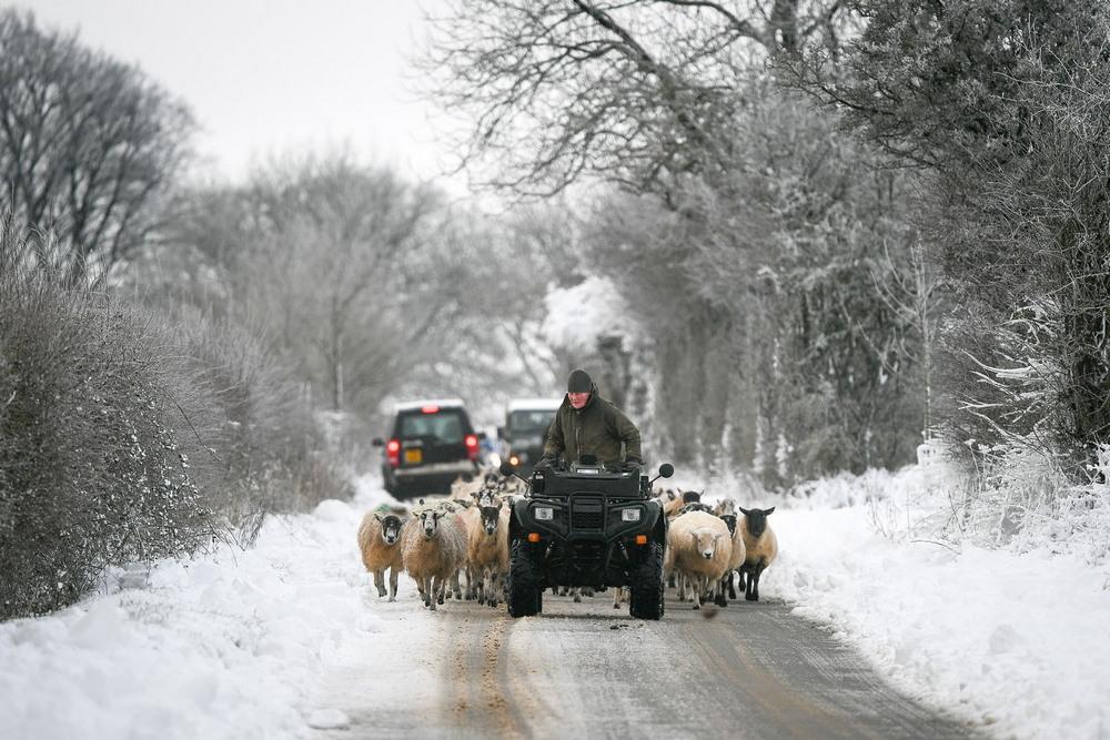 Снежный декабрь в Великобритании
