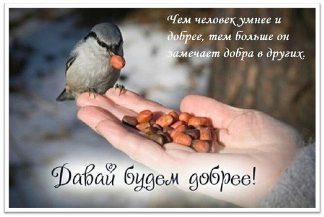 Открытки. Всемирный день доброты. Давай будем добрее
