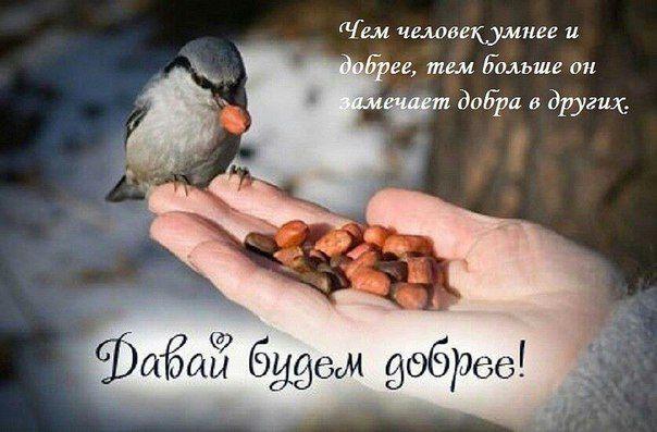 Открытки. Всемирный день доброты. Замечайте добро в других