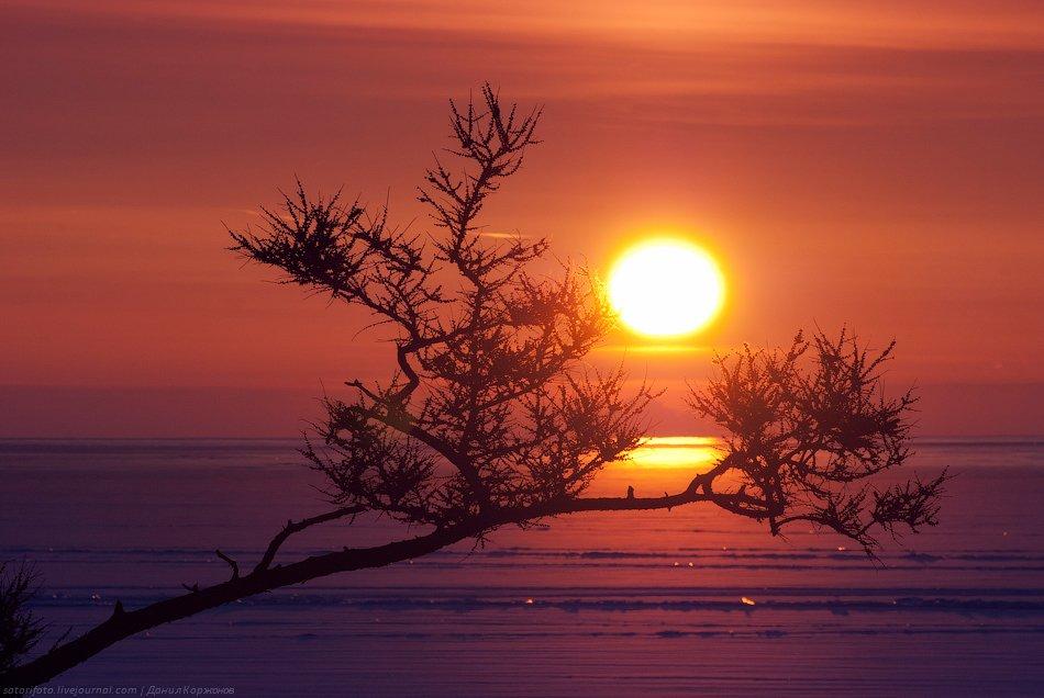 Жаль, что рассвет такой короткий на Байкале весной. Не успеешь очароваться солнышком — и оно уже убе