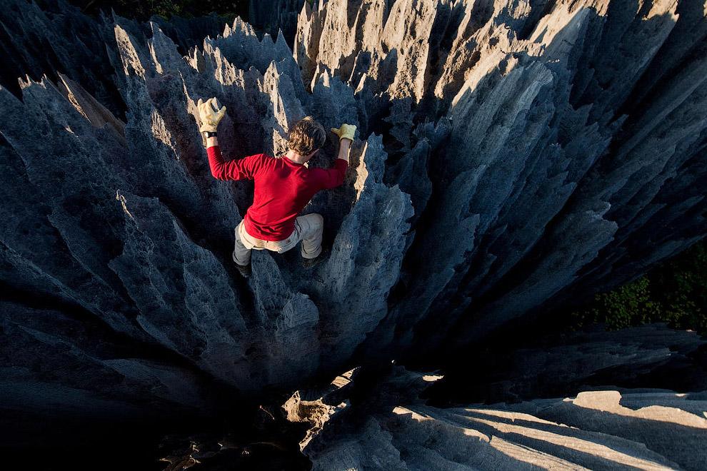 Более миллиона лет понадобилось природе, чтобы сотворить этот необычный «каменный лес».