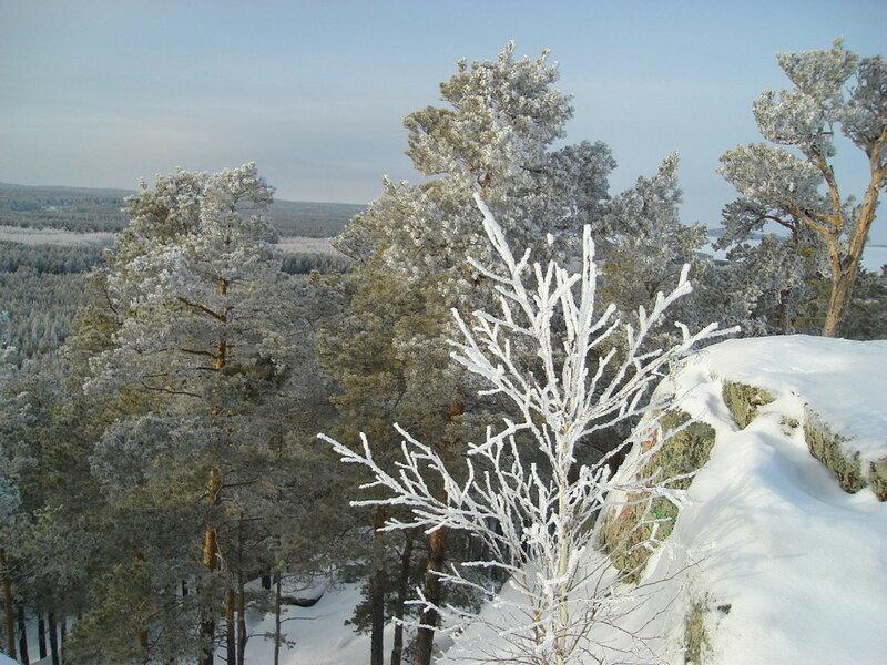 Красота зимней Зеренды. Автор- Евгения Шамрай. p04.jpg