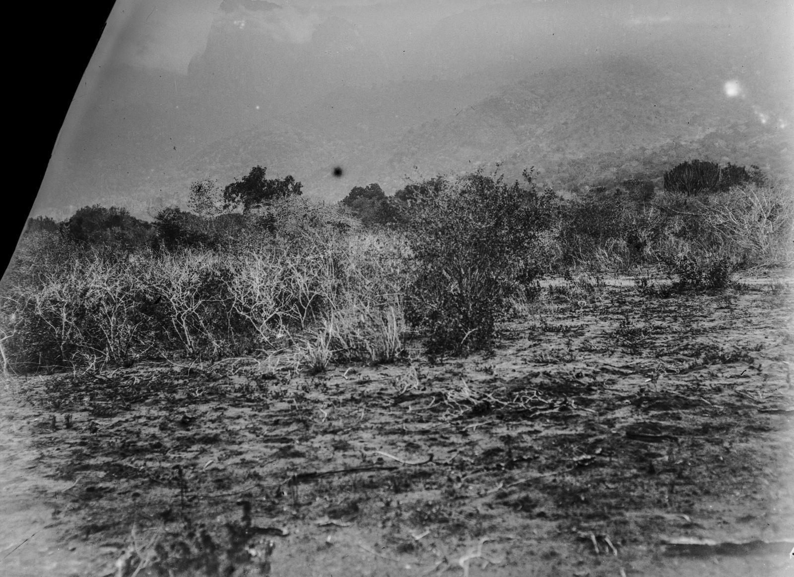 250. Вид на степной пейзаж в горах Паре