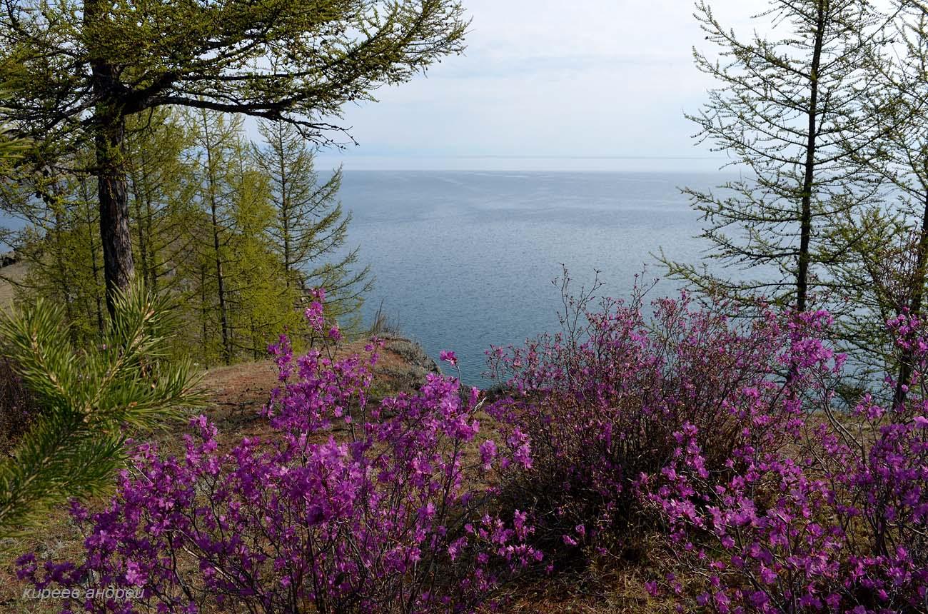 Байкал в мае.